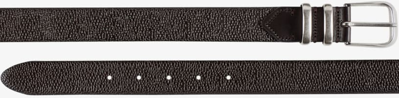Brown_Belt_A18202