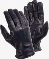 Blue_Gloves_GL19203