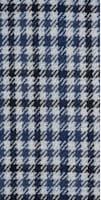 Suit_Blue_Check_Havana_P5978I