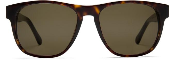 Dark Brown Square Sunglasses